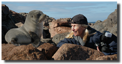 Geri face-to-face with a sea lion in Australia